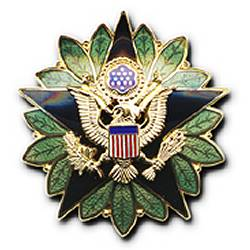 US Military badges